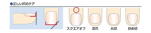 爪のケア1