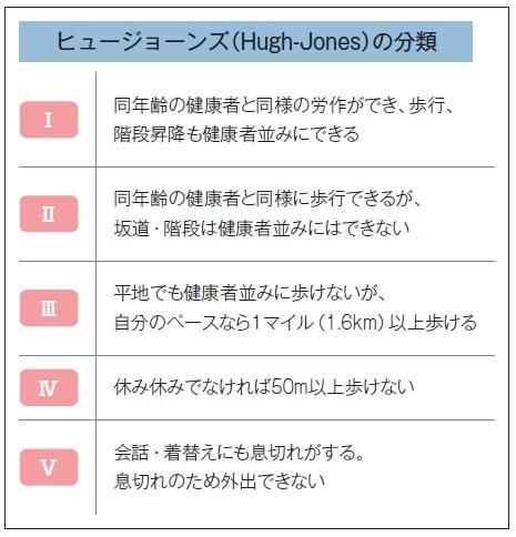 ヒュージョーンズ(Hugh-Jones)の分類