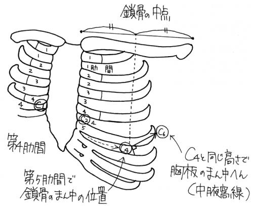 心電図計:貼付の手順(胸骨角)