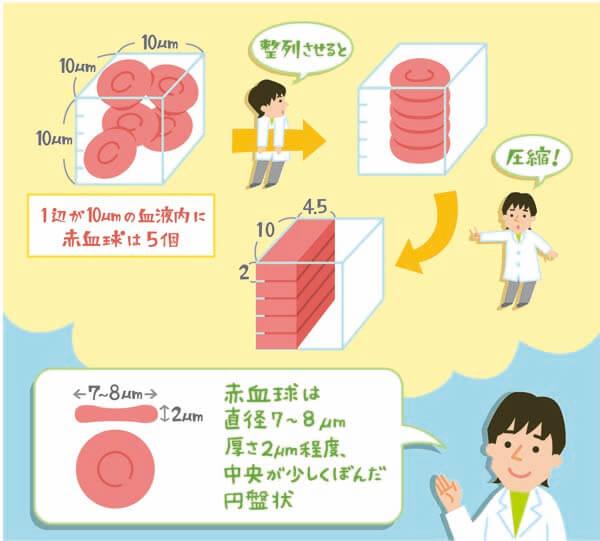 検査 低い 血液 mchc はじめまして。健康診断で、MCHCだけが少し低いようで(31.5)要医療機関