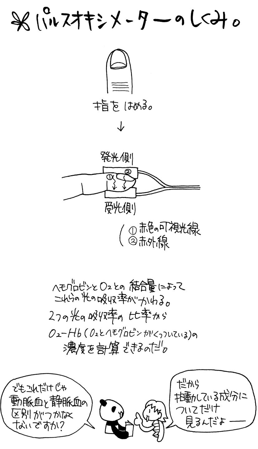 パスルオキシメーターの仕組み図解