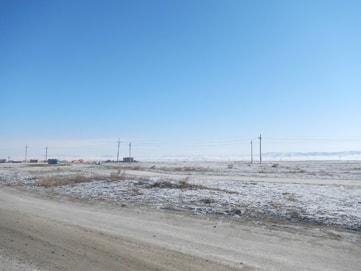 モンゴル語学学校の近くの草原