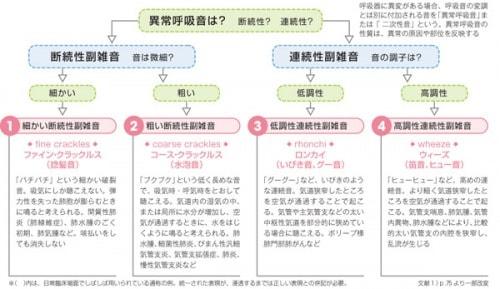 異常呼吸音(副雑音)の分類