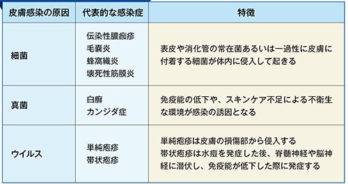 皮膚感染症の原因と発生機序の表