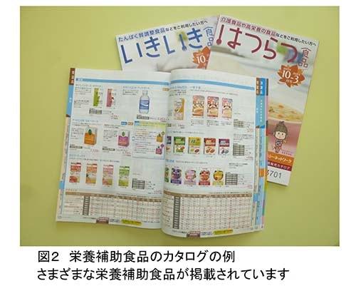 栄養補助食品のカタログの例、写真