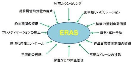 ERASにかかわる内容、説明図