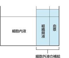 細胞外液の補給の説明図