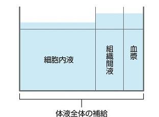 体液全体の補給の説明図