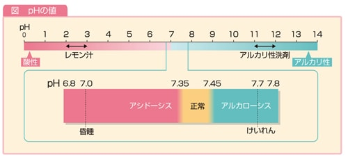 pHの値説明図