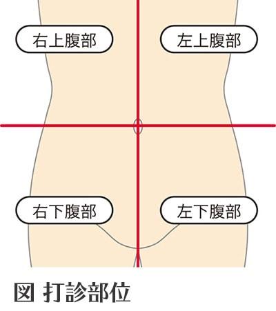 腹部の打診