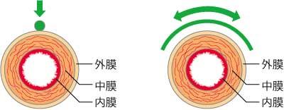 血管のさわり方