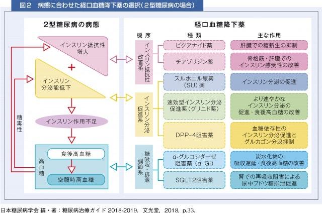 病態に合わせた経口血糖降下薬の選択(2型糖尿病の場合)