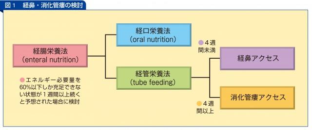 経鼻・消化管瘻の検討