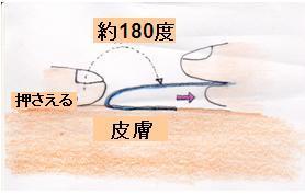 正しい剥し方説明図
