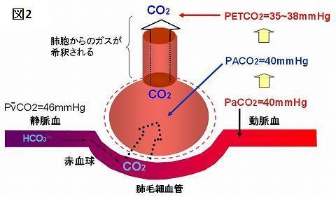PaCO2(動脈血CO2分圧)とPEtCO2の値についての説明図