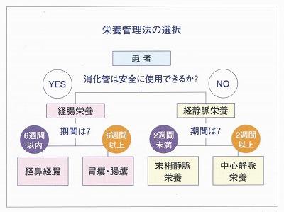 適正栄養管理法の選択説明図