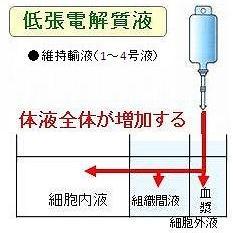 低張電解質輸液剤