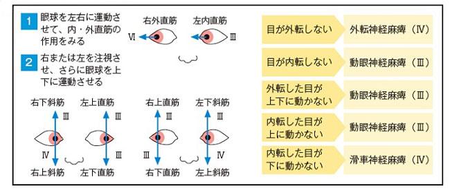 眼球運動の試験、手順説明図