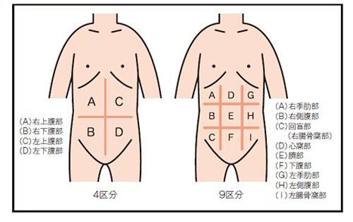 打診の方法説明図