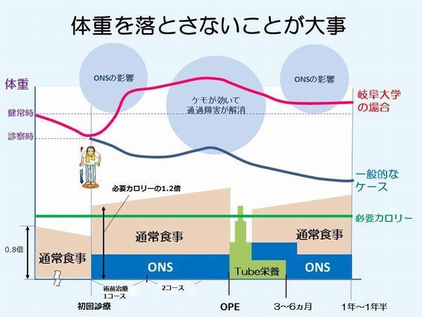 図2 術前化学(放射線)療法のONS介入イメージ