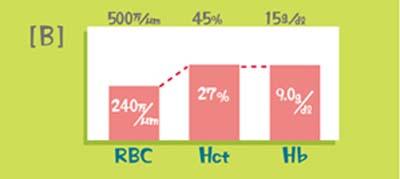 代表的な検査値のパターン(RBC低下>Hct低下≒Hb低下)