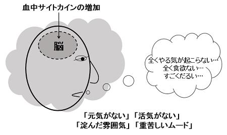 「冬眠」行動による「雰囲気」や「ムード」イメージ図