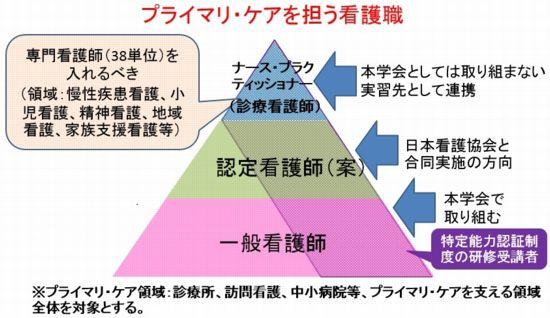 図1 プライマリ・ケアに従事する看護師のレベル(段階)設定(試案)