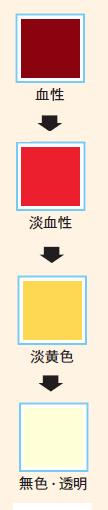 正常な排液の色の変化見本