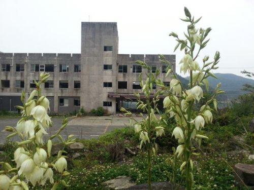 震災から1年半が過ぎた雄勝病院の写真