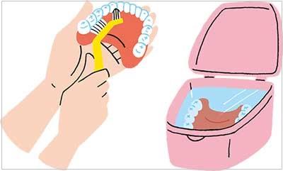 義歯の洗い方